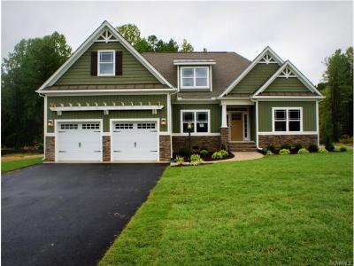 Ashland Single Family Home For Sale: 11269 Ashland Park Drive