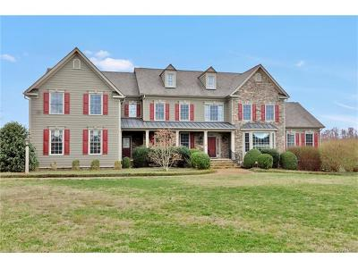 Powhatan County Single Family Home For Sale: 3773 Tilmans Farm Drive