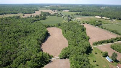Land Sold: 00 Newmans Neck Road