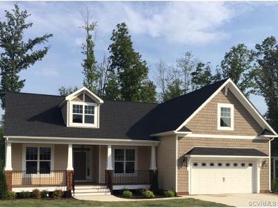 Chester Single Family Home For Sale: 4201 Hiddenwell Lane