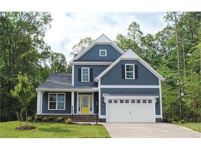 Richmond Single Family Home For Sale: 9205 Great Oaks Drive