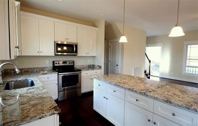 South Chesterfield Single Family Home For Sale: 15520 Happy Hill Road