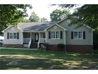 Dinwiddie Single Family Home For Sale: 26967 Greenhead Drive