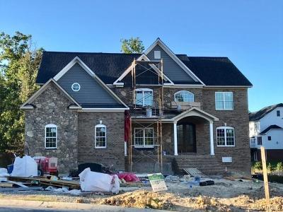 Glen Allen Single Family Home For Sale: 11404 Grey Oaks Estates Run