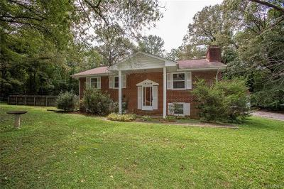Dinwiddie Single Family Home For Sale: 19309 Lundys Road