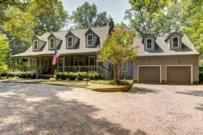 Mechanicsville Single Family Home For Sale: 7357 Valley Creek Drive