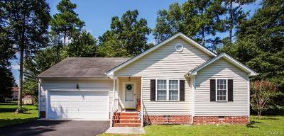 Chesterfield County Single Family Home For Sale: 5800 Obisque Drive