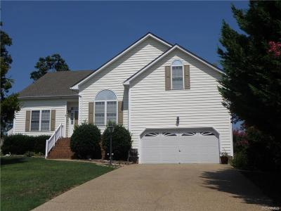 Henrico Single Family Home For Sale: 10801 Virginia Way Court