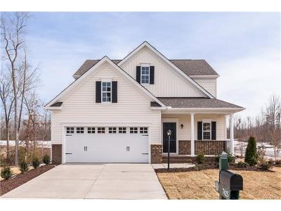 Hanover County Single Family Home For Sale: 10793 Providence Woods Lane