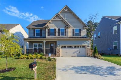 Ashland Single Family Home For Sale: 10216 Toliver Trail Circle