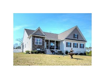 Chesterfield County Single Family Home For Sale: 20001 Talon Point Drive