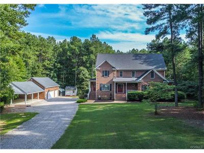 Chesterfield County Single Family Home For Sale: 24101 Pear Orchard Road