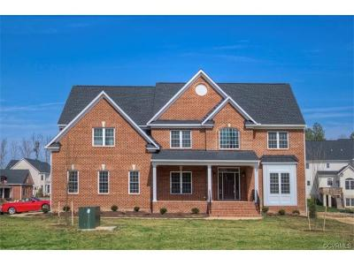 Henrico County Single Family Home For Sale: 11500 Grey Oaks Estates Run
