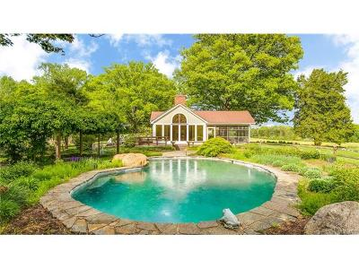 Hanover County Single Family Home For Sale: 16411 Woodman Hall Road