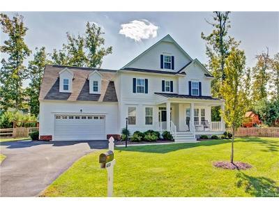 Ashland Single Family Home For Sale: 10153 Ambys Lane