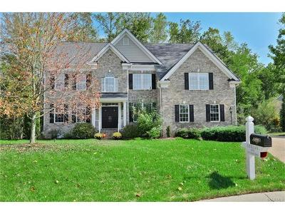 Chesterfield County Single Family Home For Sale: 4307 Nevil Bend Turn