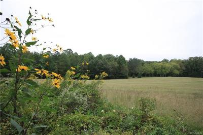 Hanover County Residential Lots & Land For Sale: 18348 Beaver Dam Road
