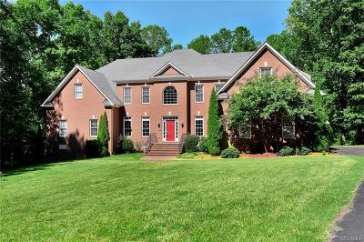 Chesterfield County Single Family Home For Sale: 13324 Chesdin Landing Drive