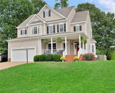 Hanover County Single Family Home For Sale: 9046 Prolonge Lane