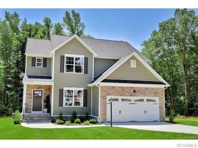 Chesterfield County Single Family Home For Sale: 4249 Wells Ridge Court Court