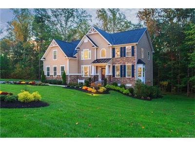 Chesterfield Single Family Home For Sale: 8113 Aldera Lane