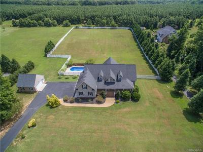 Powhatan County Single Family Home For Sale: 1423 Donavon Mill Lane