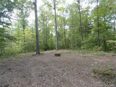 Dinwiddie County Residential Lots & Land For Sale: 99-2-15 Ridge Lane