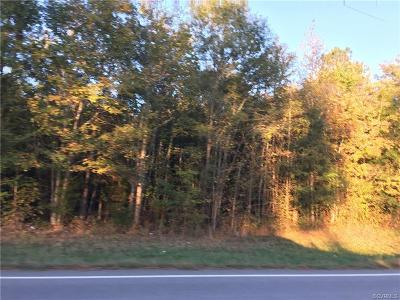 Dinwiddie County Residential Lots & Land For Sale: Tbd-Lot1 McKenney Highway