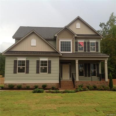 Hanover County Single Family Home For Sale: 9983 Canvasback Pass Court