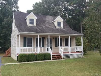 Dinwiddie Single Family Home For Sale: 24013 Fieldshire Lane