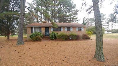 Petersburg Single Family Home For Sale: 1625 Youngs Road
