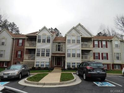 Henrico Rental For Rent: 3100 Wallaby Trace #705