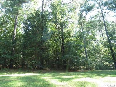 Dinwiddie County Residential Lots & Land For Sale: 2526 Miry Run Road