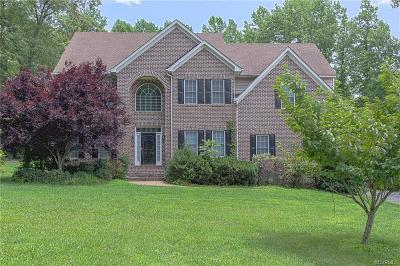Hanover County Single Family Home For Sale: 6068 Turkey Hollow Place