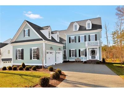 Midlothian Single Family Home For Sale: 16000 Old Castle Road