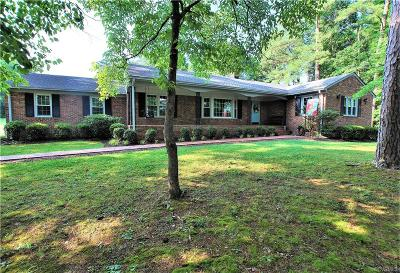Hanover County Single Family Home For Sale: 16198 Casco Heights Lane