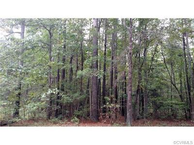 Chesterfield County Residential Lots & Land For Sale: 21007 Skinquarter Road