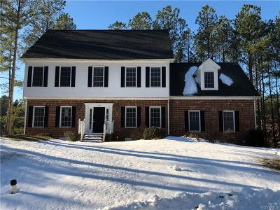 Single Family Home For Sale: 11431 Red Brick Court