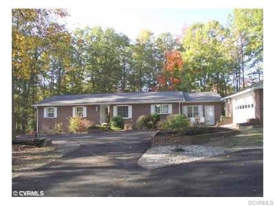 Dinwiddie County Single Family Home For Sale: 20200 Ann Road