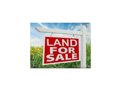 Henrico Residential Lots & Land For Sale: 4193 Charles City Road