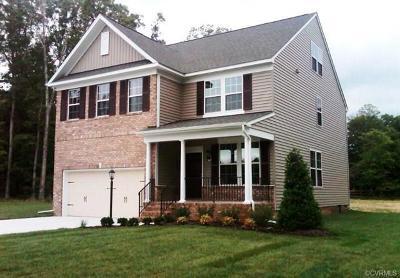 Glen Allen Single Family Home For Sale: 10850 Holman Ridge Road
