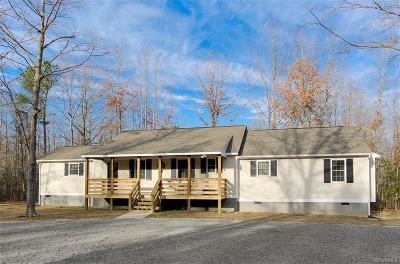 Dinwiddie County Single Family Home For Sale: 23880 Skala Drive