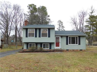 Henrico Single Family Home For Sale: 9306 Howze Road