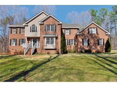 Powhatan Single Family Home For Sale: 3990 Three Bridge Road
