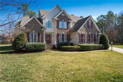 Glen Allen Single Family Home For Sale: 11409 Nightmuse Court