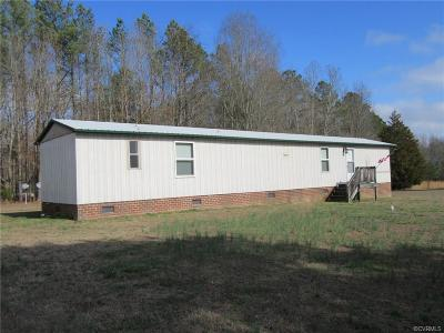Dinwiddie County Single Family Home For Sale: 19915 Flatfoot Road