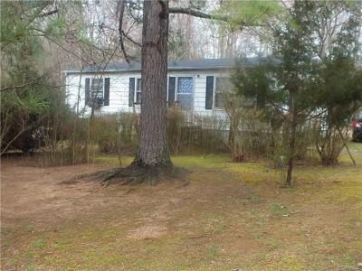 Dinwiddie Single Family Home For Sale: 14712 Madison Road