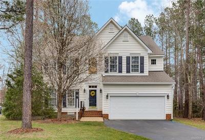 Henrico County Single Family Home For Sale: 12121 Jamieson Place