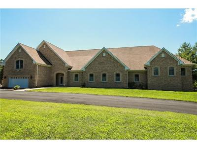 Hanover County Single Family Home For Sale: 14166 Mill Creek Drive