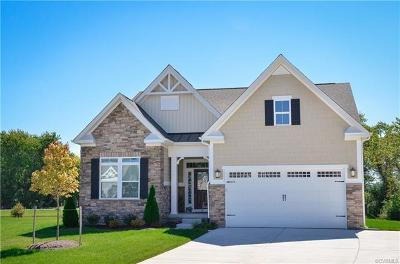 Chesterfield Single Family Home For Sale: 17607 Twin Falls Lane